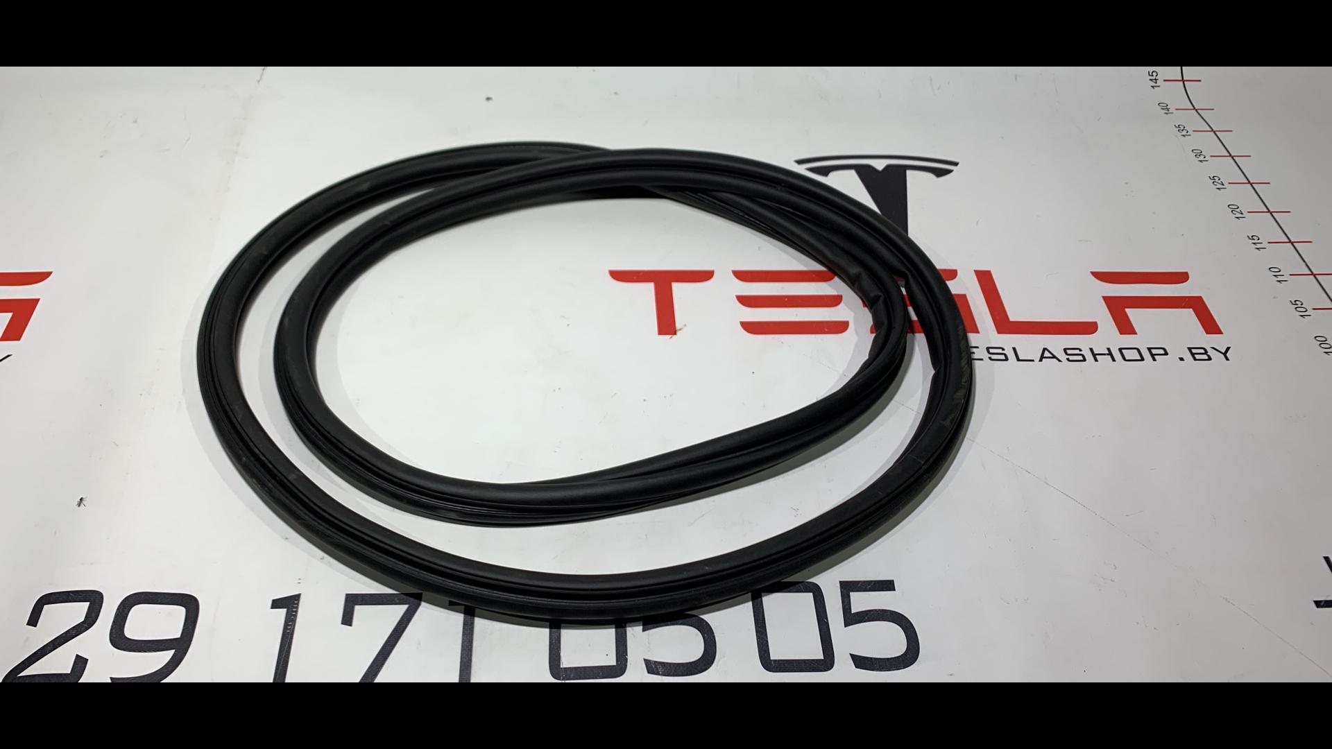 Уплотнитель (прочее) Tesla  1033016-00-B